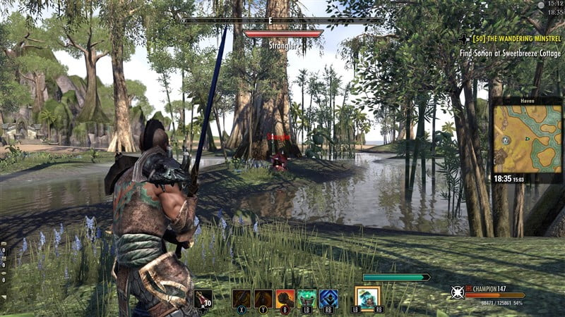 The Elder Scrolls Online: Tamriel Unlimited 5