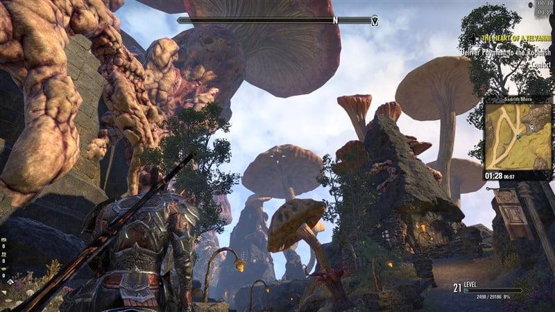 The Elder Scrolls Online: Tamriel Unlimited 9