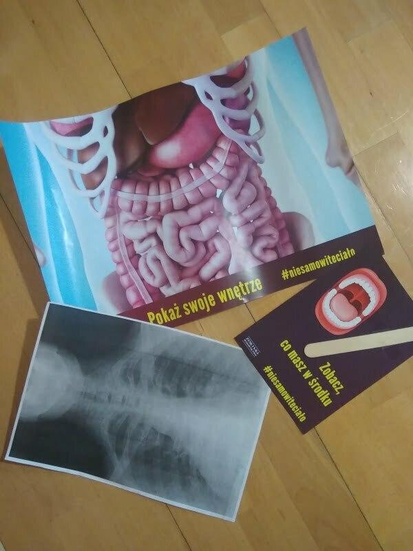 """Materiały promocyjne do książki """"Ciało. Instrukcja dla użytkownika"""" Billa Brysona"""