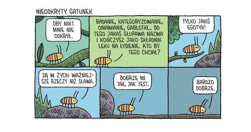 Czy to aby nie robak sumienia, droga Entomologio Motylkowska?